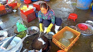 Cooking Fish Soup in Vietnam from market to table