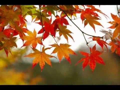 姚莉 - 秋的懷念 - Yao Li -  Autumn Nostalgia