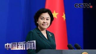[中国新闻] 外交部:中国企业积极同世卫组织合作 共同抗击疫情 | 新冠肺炎疫情报道
