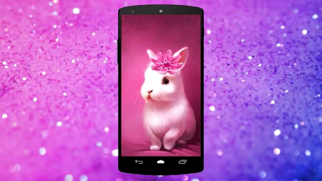 Pink bunny rabbit live wallpaper youtube pink bunny rabbit live wallpaper altavistaventures