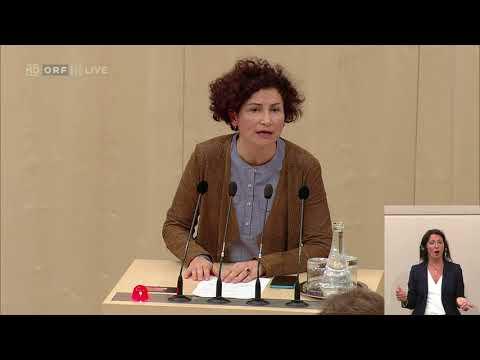 04.10.2017 Nationalratssitzung 090527 Alev Korun Grüne