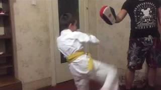 Видео урок по каратэ. Удар маваши.