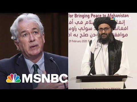 CIA Director Burns Met Face-To-Face With Taliban Leader Baradar
