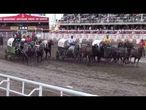 Calgary Stampede Chuckwagon Races Heat 7