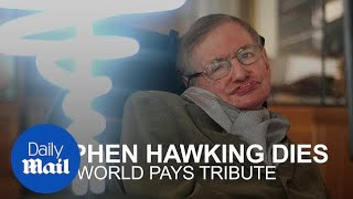 The world pays tribute to the late Stephen Hawking on Twitter - Daily Mail