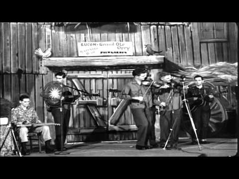 The Melody Pals Band plays bluegrass mountain music on the Palmgarden Service Clu...HD Stock Footage