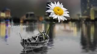 Güzel Manzara 💫 ! Whatsapp Durum