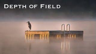Depth of Field 2018 | Robert Evans - Creating Powerful Imagery