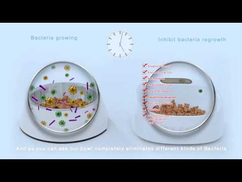 SMART ANTI-BACTERIAL BOWL FOR DOGS AND CATS