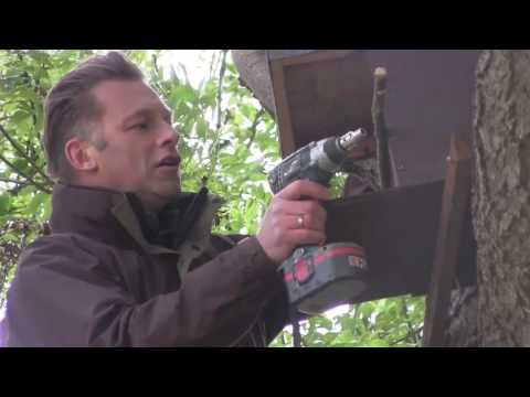 Raptor Nest box Project