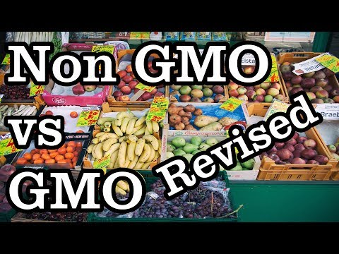 GMO vs Organic or Non Gmo