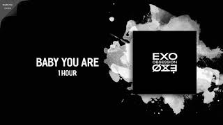 [ 1 HOUR ] EXO (엑소)『BABY YOU ARE』