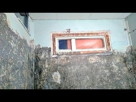 Как отодрать краску от стен