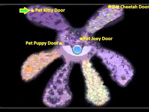 Animal Jam: Bitter Sweets Pet Doors Locations