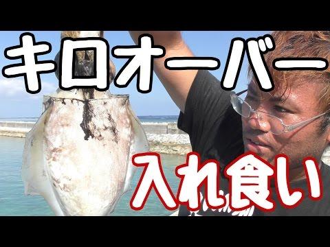 【入れ食い】所持金0円で釣り生活 12話【伊是名島編】