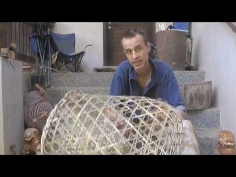 How to make fish traps youtube for Diy fish trap