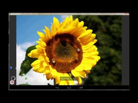 Digital Photo Frame Slideshow 1