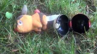 Real Life Pokemon 3