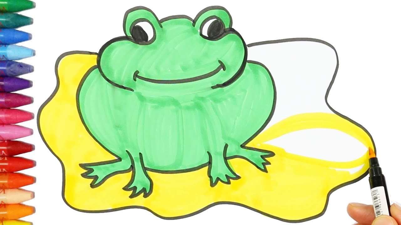 how to draw and color a frog drawing and coloring the frog
