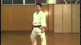 Gekisai Di Ni - Kaishugata