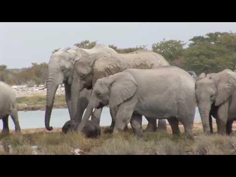 Destination Namibie