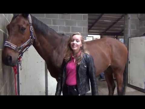 Vlog Fenna van Dam: Zaterdag op stal