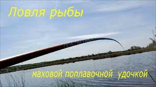 Рыбалка.  Ловля рыбы маховой поплавочной удочкой.(Дорогие друзья, наверное не найдется человека, который в своей жизни ни разу не ловил рыбу обычной маховой..., 2016-04-29T18:17:08.000Z)