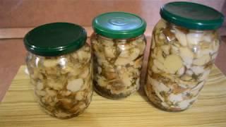 Маринованные белые грибы. Белые грибы на зиму и в домашних условиях