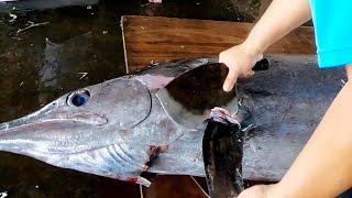 巨型黑皮旗魚 & 紅肉旗魚切割 - 台灣東港