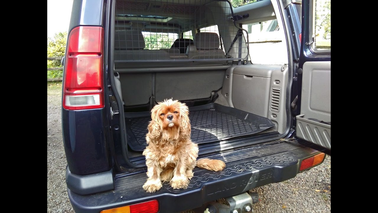 Land Rover Discovery 2 Td5 And V8 Dog Guard Fitting