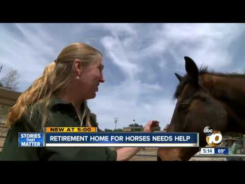 Retirement home for horses needs your help