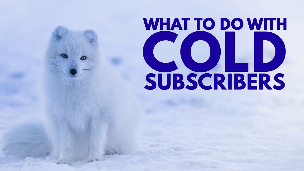 Our Convertkit Cold Subscribers Statements