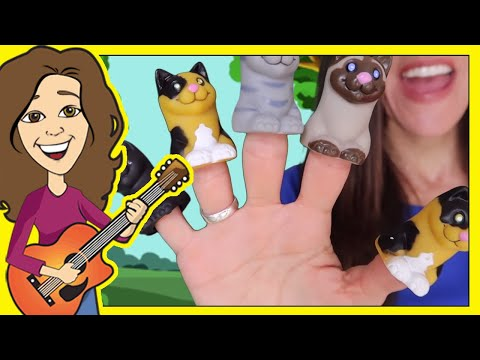 5 Little Kittens Children's Song | Counting Kittens Meowing | Cat Song by Patty Shukla