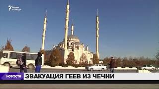 Правозащитники вывозят геев из Чечни