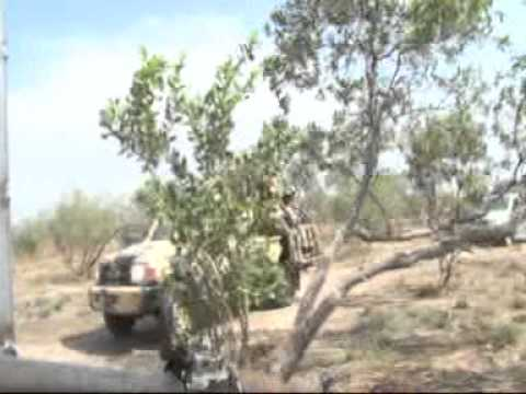 Action in Sambisa Forest
