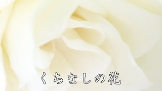 八代亜紀さんの優しい歌声で聴くこの曲も、素晴らしいと思います。