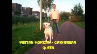 Peetah Morgan - Caribbean Queen (Live In Love Riddim 2012)