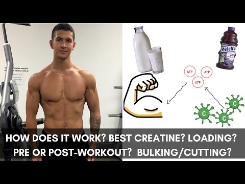 how-to-use-creatine-effectively:-6-things-you-need-to-know