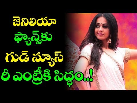 Genelia Come Back Entry In Tollywood Industry | Tollywood News | Top Telugu Media