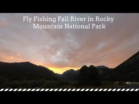 Fly Fishing Fall River In Rocky Mountain National Park Near Lawn Lake Trailhead