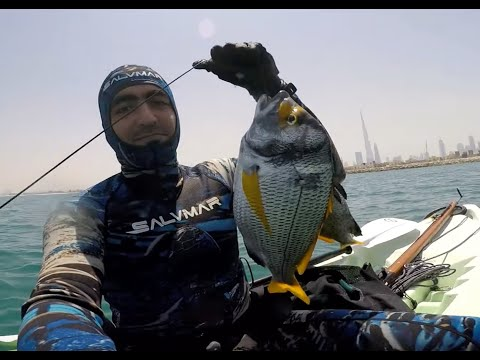 UAE Dubai Spearfishing freediving diving from kayak