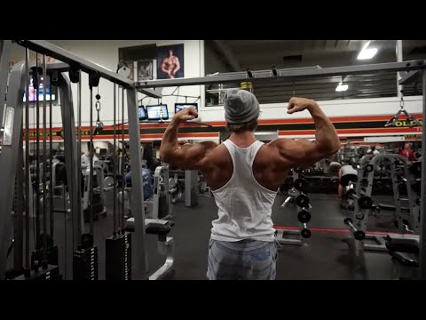 Back and Trap Workout Mecca
