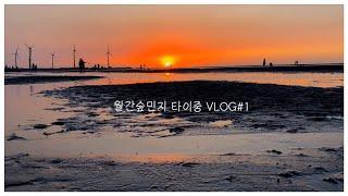 혼자 떠나는 타이중 Vlog #1 : 소프호텔, 궁원안…