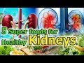 How to Improve Kidney Function - Eat These 5 Super foods for Healthy.