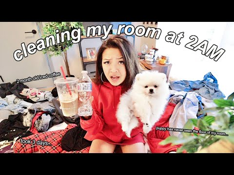 CLEANING MY DISGUSTING ROOM AT 2AM (i finally found my puppy)