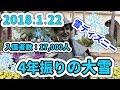 東京ディズニーシー 2018.1.22の様子 の動画、YouTube動画。