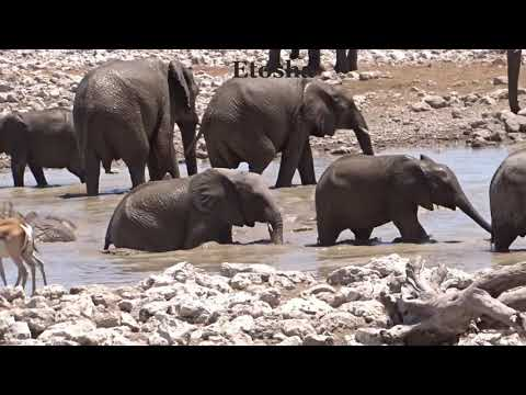 Mike & Pauline's Trip to Namibia, Africa October 2018 Revision 2