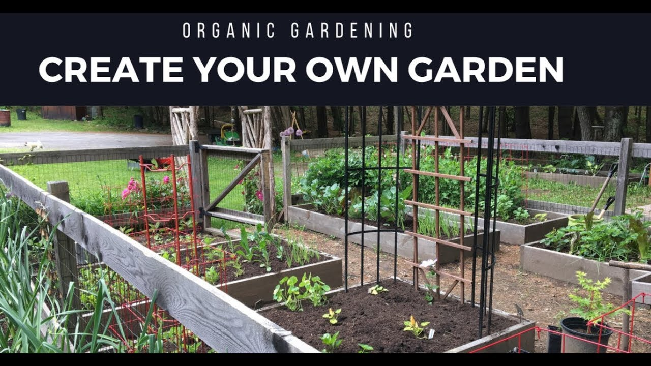 How We Created A Vegetable Garden Design With Limited Garden Space