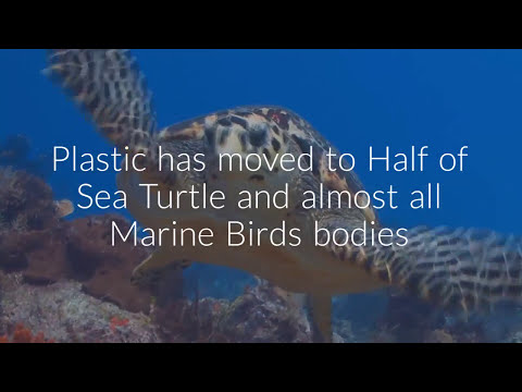 World Earth Day 2018 theme-END PLASTIC POLLUTION-International Mother Earth day-Animated