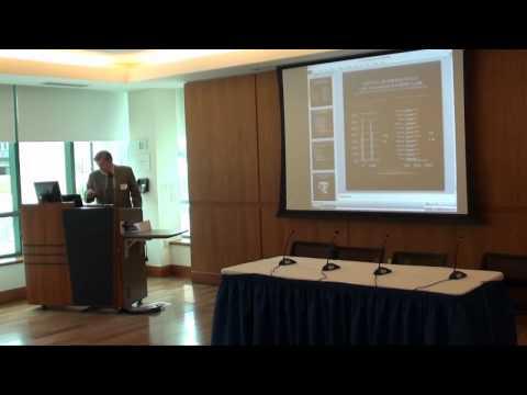 NEMLA Meeting 2012: Martin Schreiner, Building a Tower of Babel or Charting [...]
